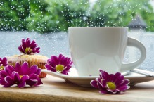Tea cup in the rain surrounded by purple flowers